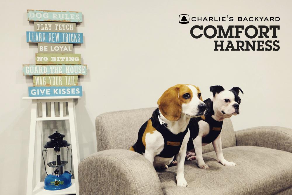 Comfort Harness Black Key-Visual