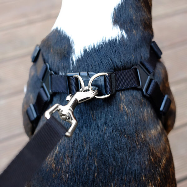 Comfort Harness Verschluss