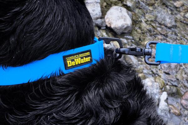 DeWater Collar Blue Verschluss