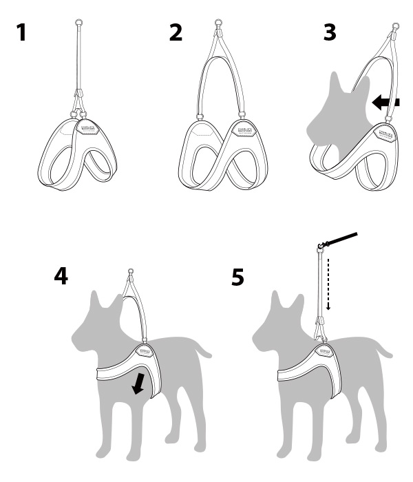 Easy harness use