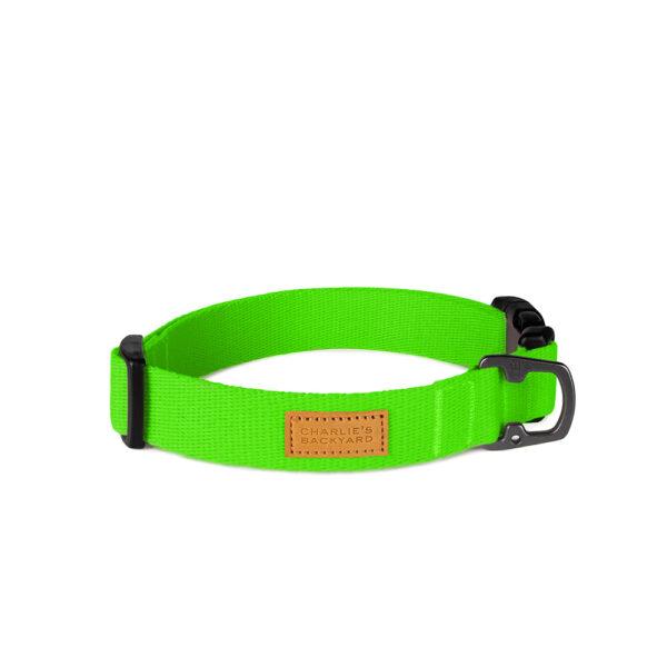 Field Collar Neon Green