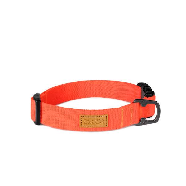 Field Collar Neon Orange
