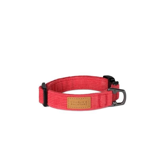 Field Collar Red