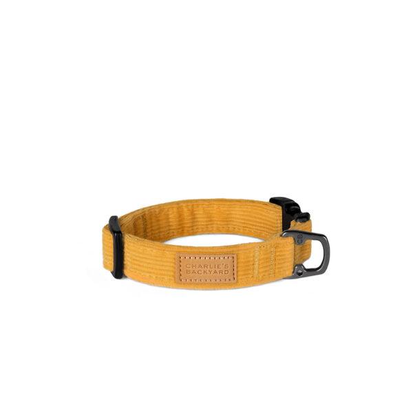 Field Collar Yellow