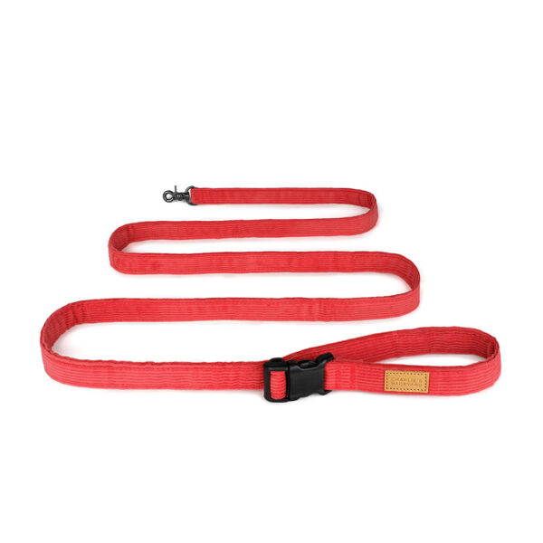 Field Leash Red small