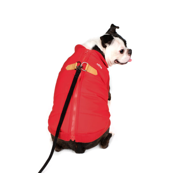Harness Jacket Red
